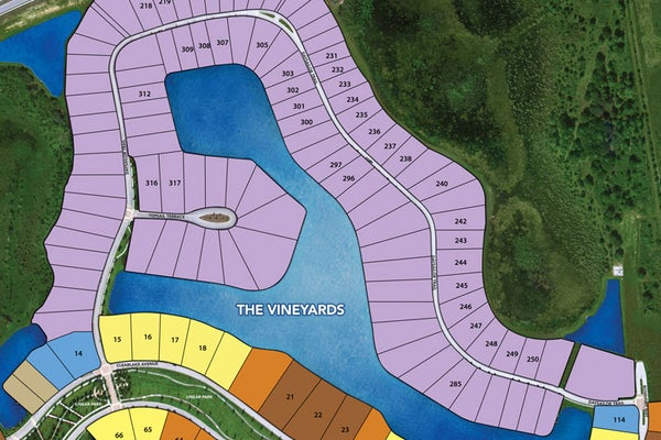 Vineyards at The Lake Club / Site Plan