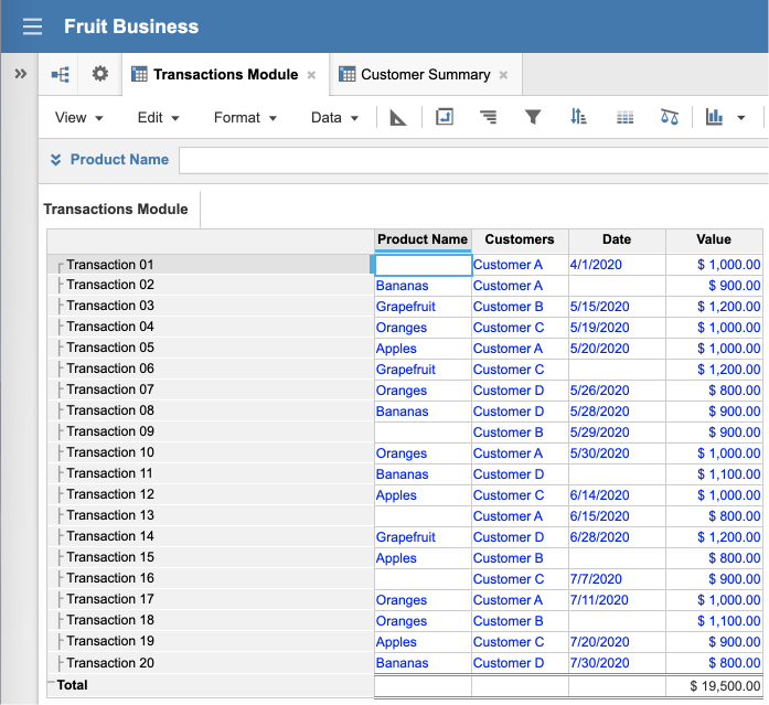A module view with four line items named Product Name, Customers, Date, and Value on columns. On rows, there is a list with 20 items named Transaction 01 through Transaction 20.