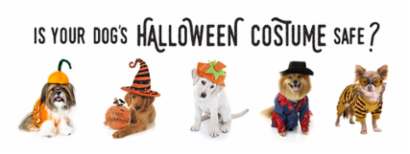 Dogs in Costume