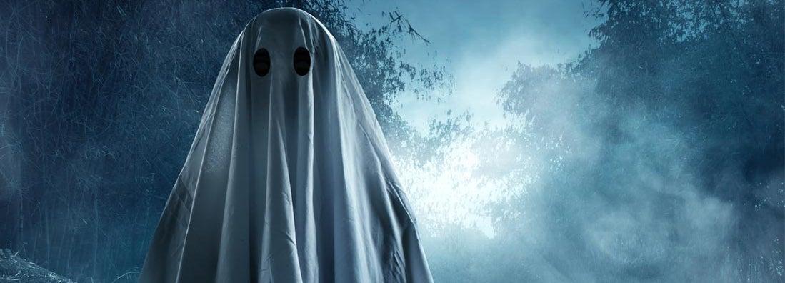 Ghost Insurance