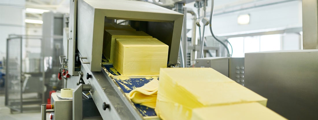 Conveyor line with butter cubes moving down for further manufacturing process at food plant