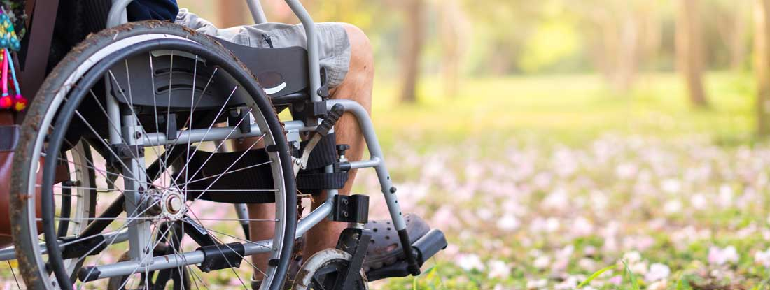 Disability income insurance benefits