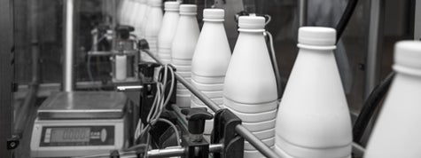 White plastic milk bottles on the conveyor in a dairy plant
