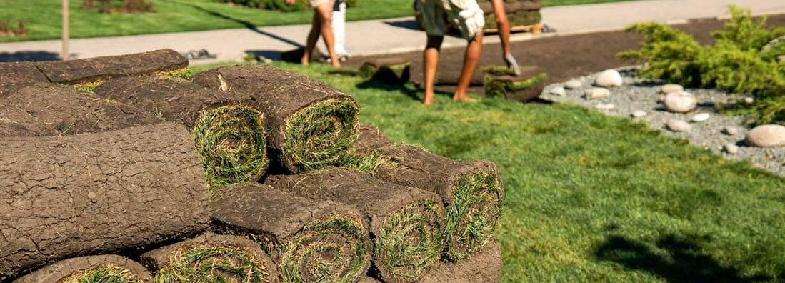 Landscape Installation Service Insurance