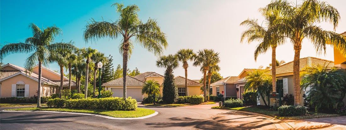 Gated community houses with palms, South Florida