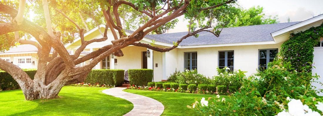 Homeowners vs Renters Insurance