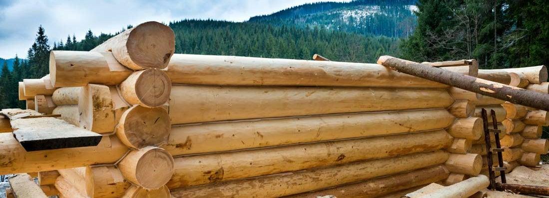 Log home builders insurance
