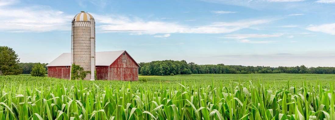 Lake Bluff Illinois Farm Insurance