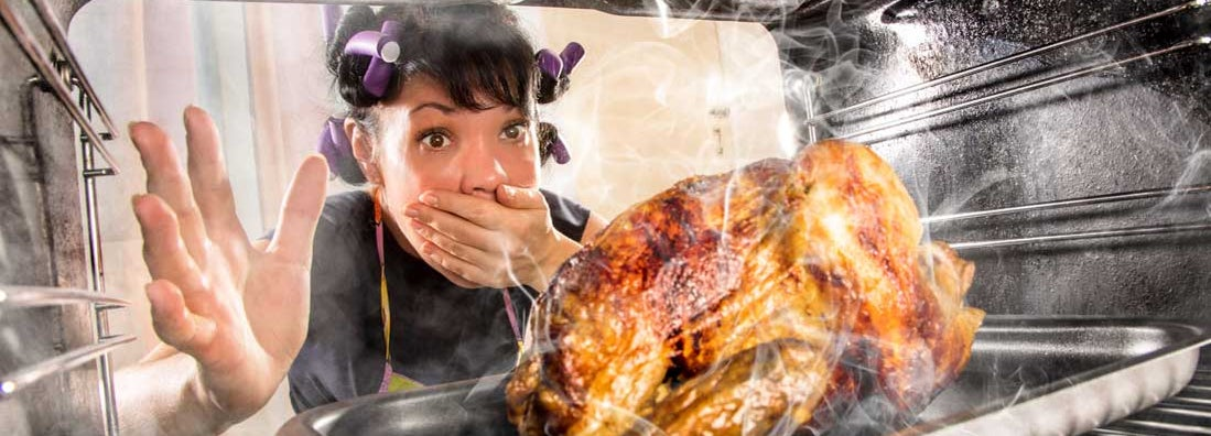Housewife overlooked turkey in the oven, so she had scorched, view from the inside of the oven