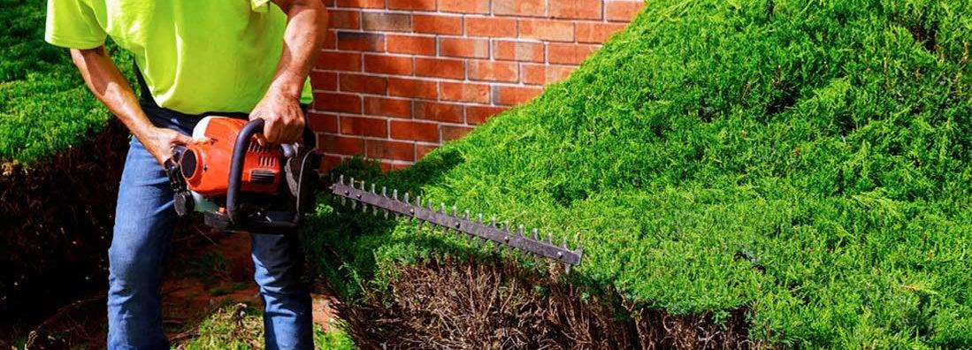Massachusetts Landscapers Insurance