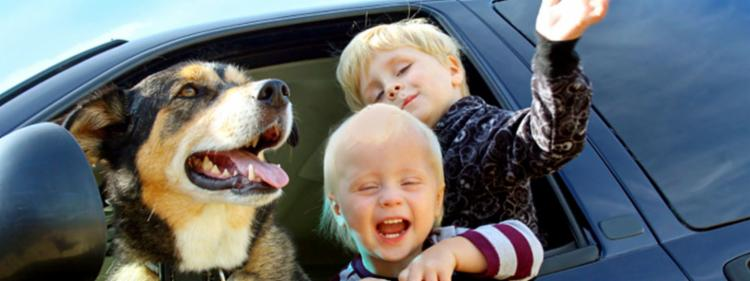 Kids with their dog in a minivan