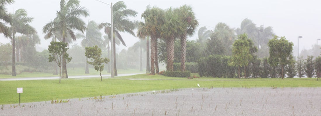 Clearwater Florida Flood Insurance