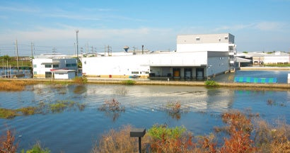Business Flood Insurance