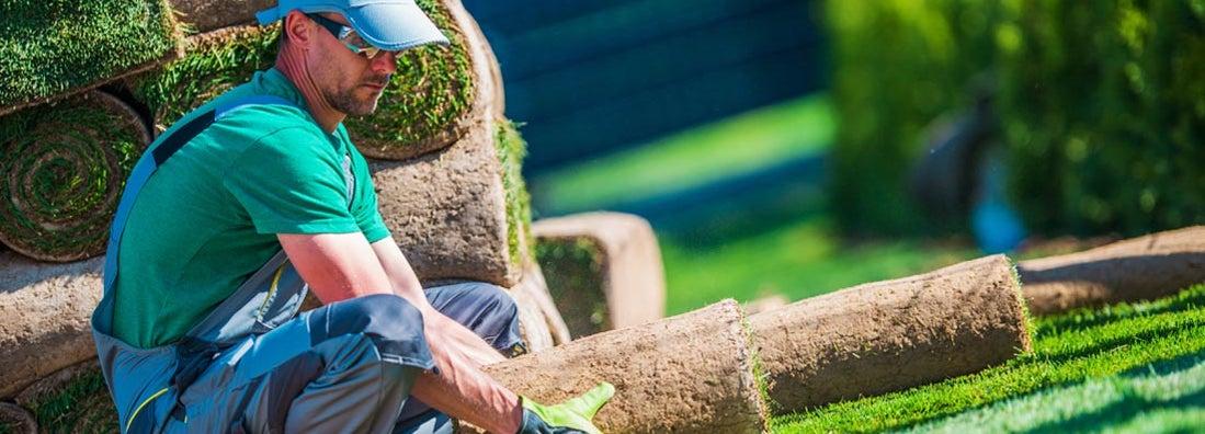 Arizona Landscapers Insurance