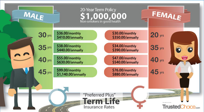 sample of 20 year term life insurance policy