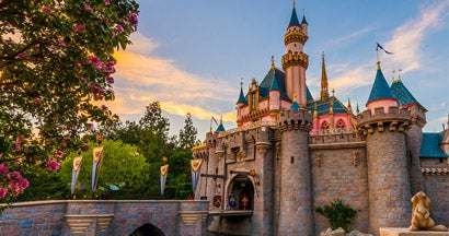 How to insure Disneyland