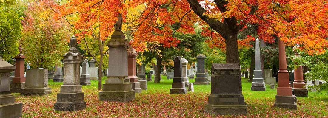 Grave stones and memorials under a red maple tree