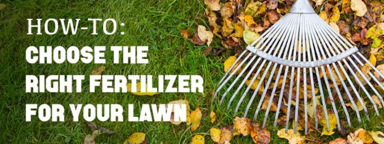 How-To Choose the Right Fertilizer
