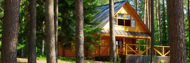 What is the cost of cabin insurance