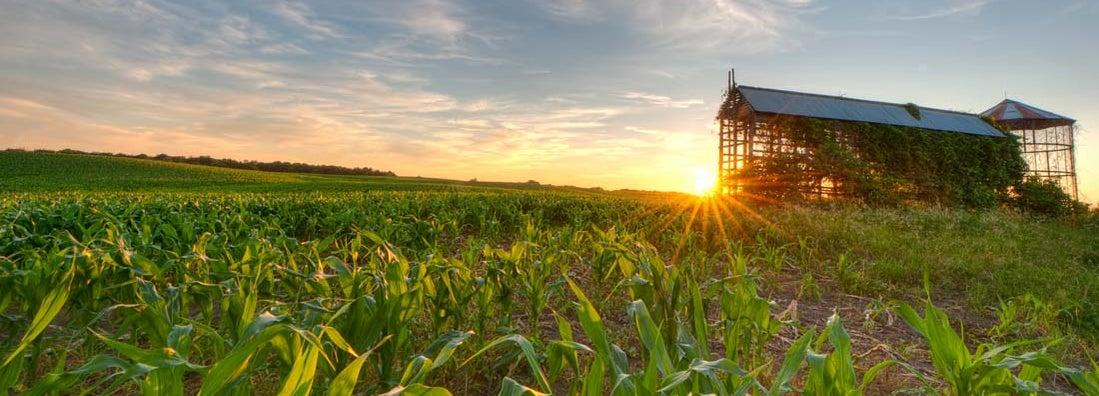 Springfield Illinois Farm Insurance