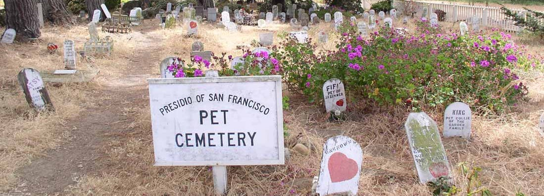 Pet Cemetery Insurance