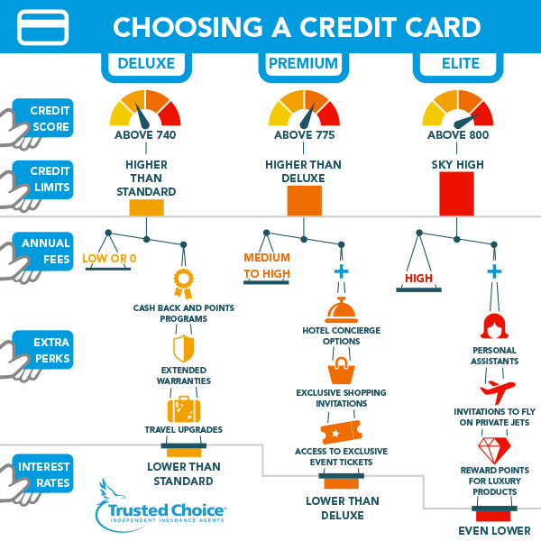 choosing a credit card infographic