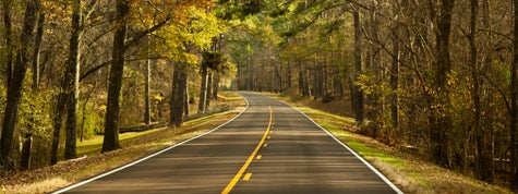 Road down the Natchez Trace Parkway in fall