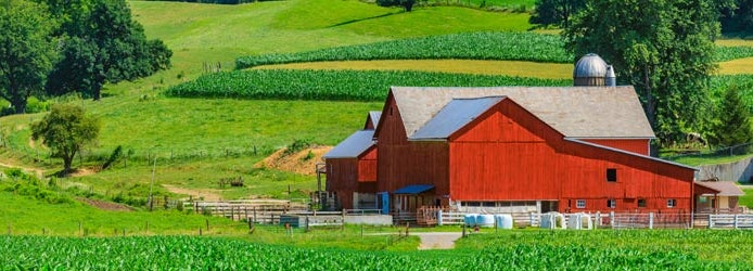 Carbondale Illinois Farm Insurance