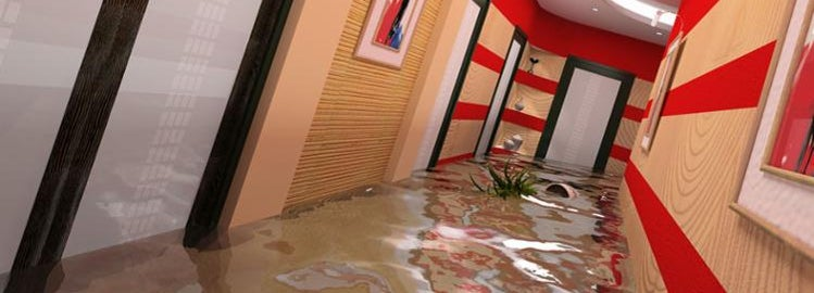 Brightly lit hallway at home, floor covered in water.