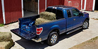 Ford F-150 Insurance