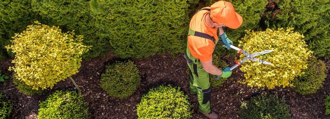 Garden Maintenance Service Insurance