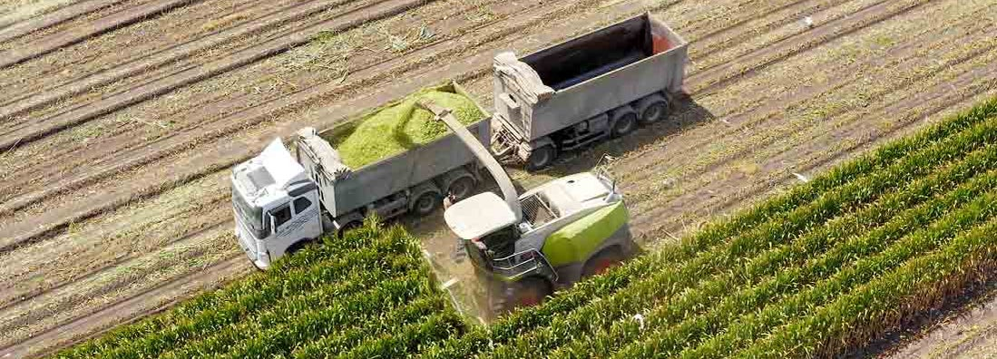 Who is responsible for your farm crops in transit