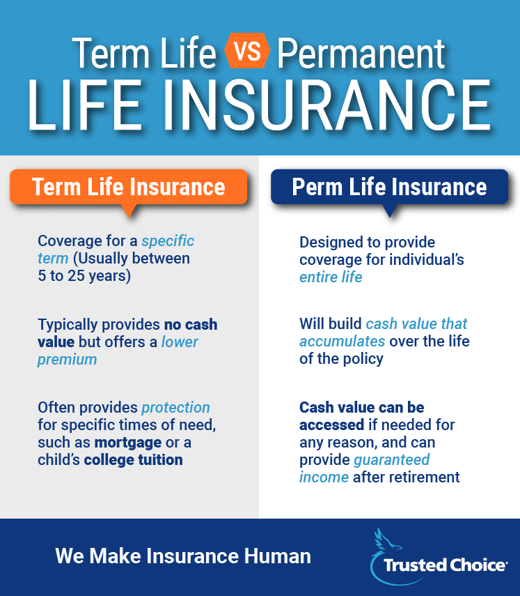 term vs perm life chart