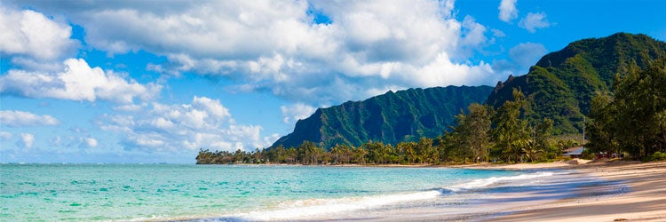 Hawaii disability insurance