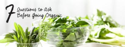 herbs and fresh veggies