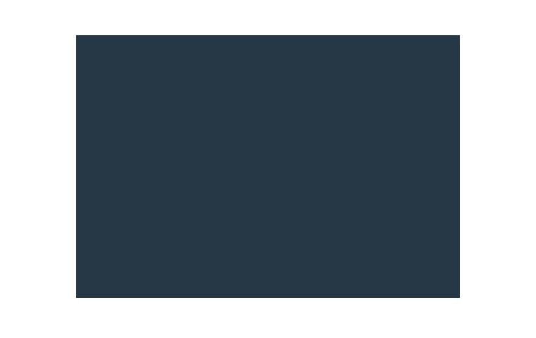 summer pest control icon