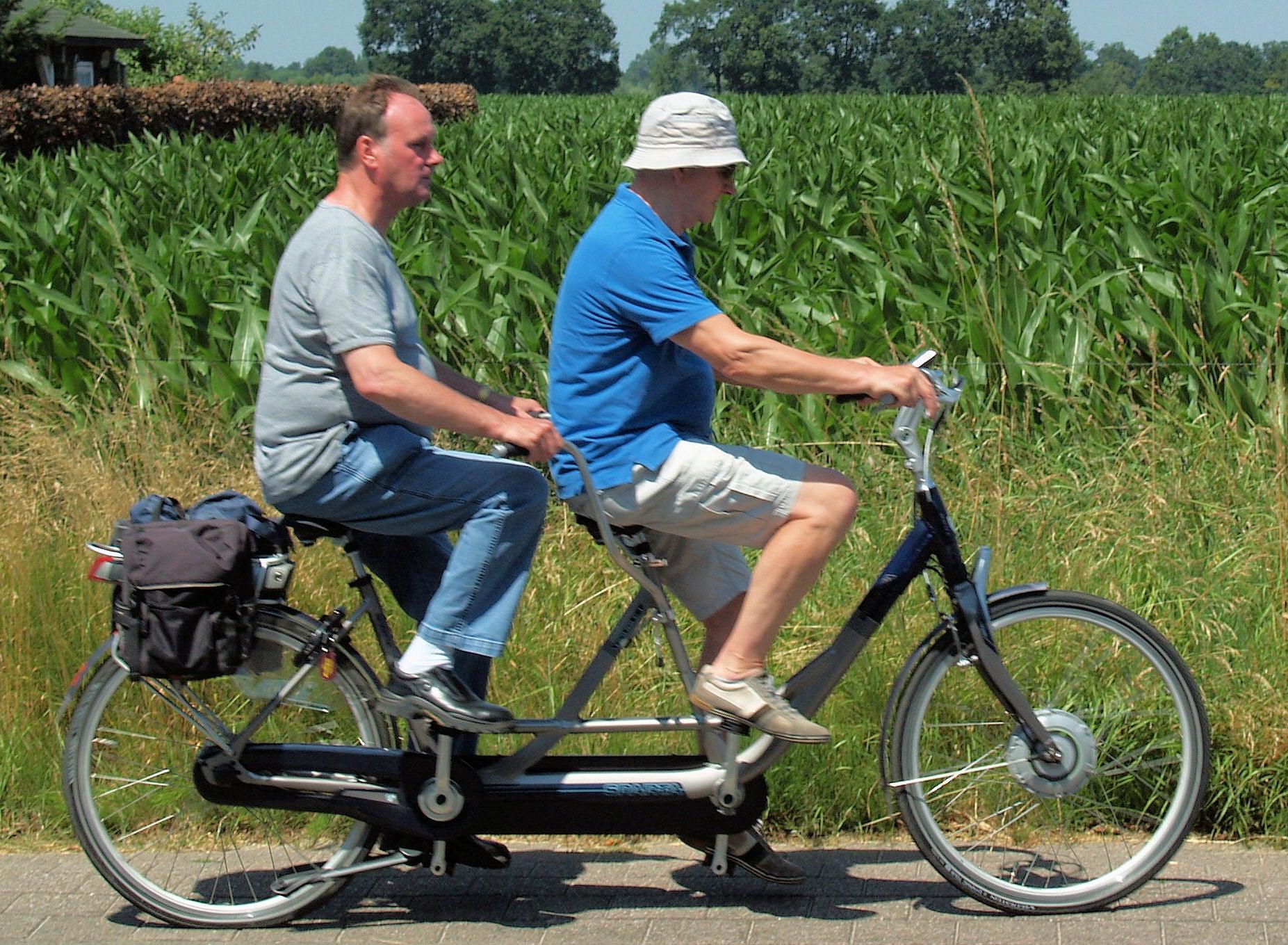 Twee heren fietsen op een tandem langs maisvelden