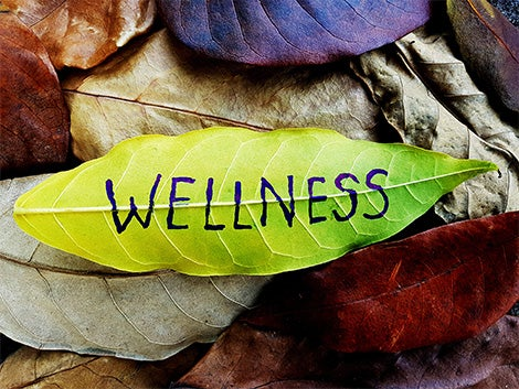 """Leaves are on the ground and one says """"wellness."""""""