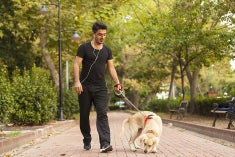 Young man with headphones walking dog in a park.