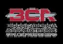 Biggs Cardosa Associates Inc.