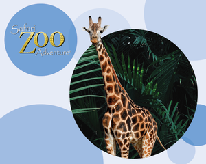 Safari Zoo Adventure