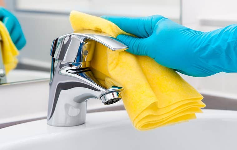 person with gloved hands cleaning bathroom sink