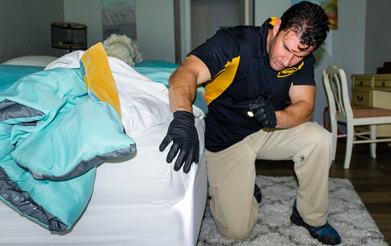 technician inspecting mattress