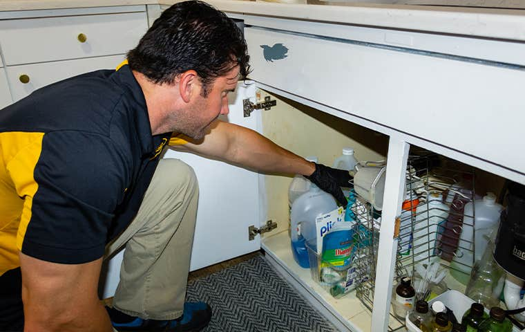 technician inspecting a home