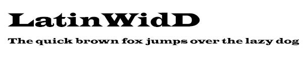 LatinWidD font