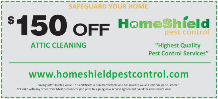 attic clean up coupon