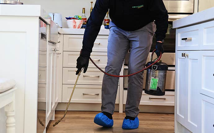 technician treating inside a house for ants