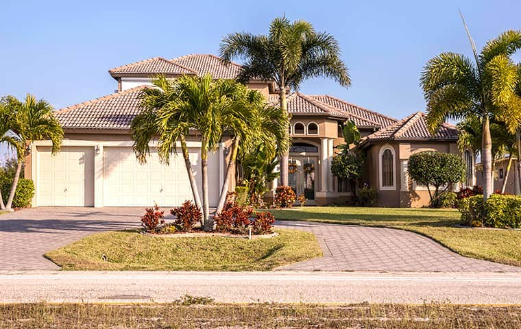 a home in florida with many palm trees