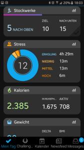 Garmin Vivoactive 3 Screenshot App