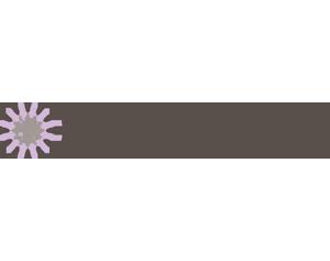 Michael Hill Bridal Range